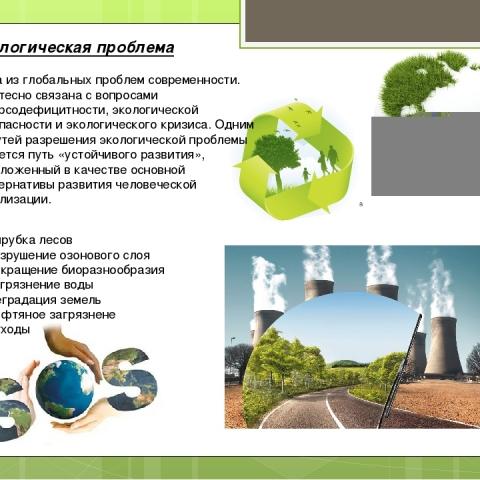 Депутатская комиссия по вопросам окружающей среды выяснила, какие экологические проблемы волнуют обнинцев больше всего