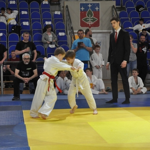 В Пущино состоялись состязания дзюдоистов