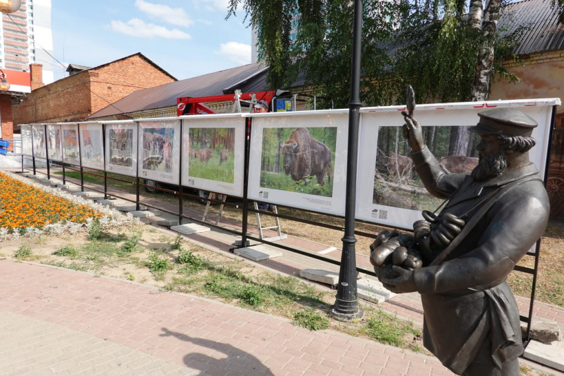 В Серпухове открылась передвижная фотовыставка под открытым небом