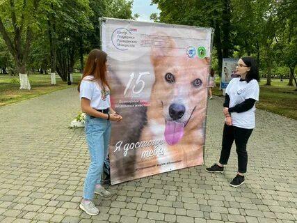 В обнинском Городском парке до 17 октября работает новая фотовыставка «Хочу домой!», приуроченная ко Всемирному дню защиты животных, который отмечался 4 октября.